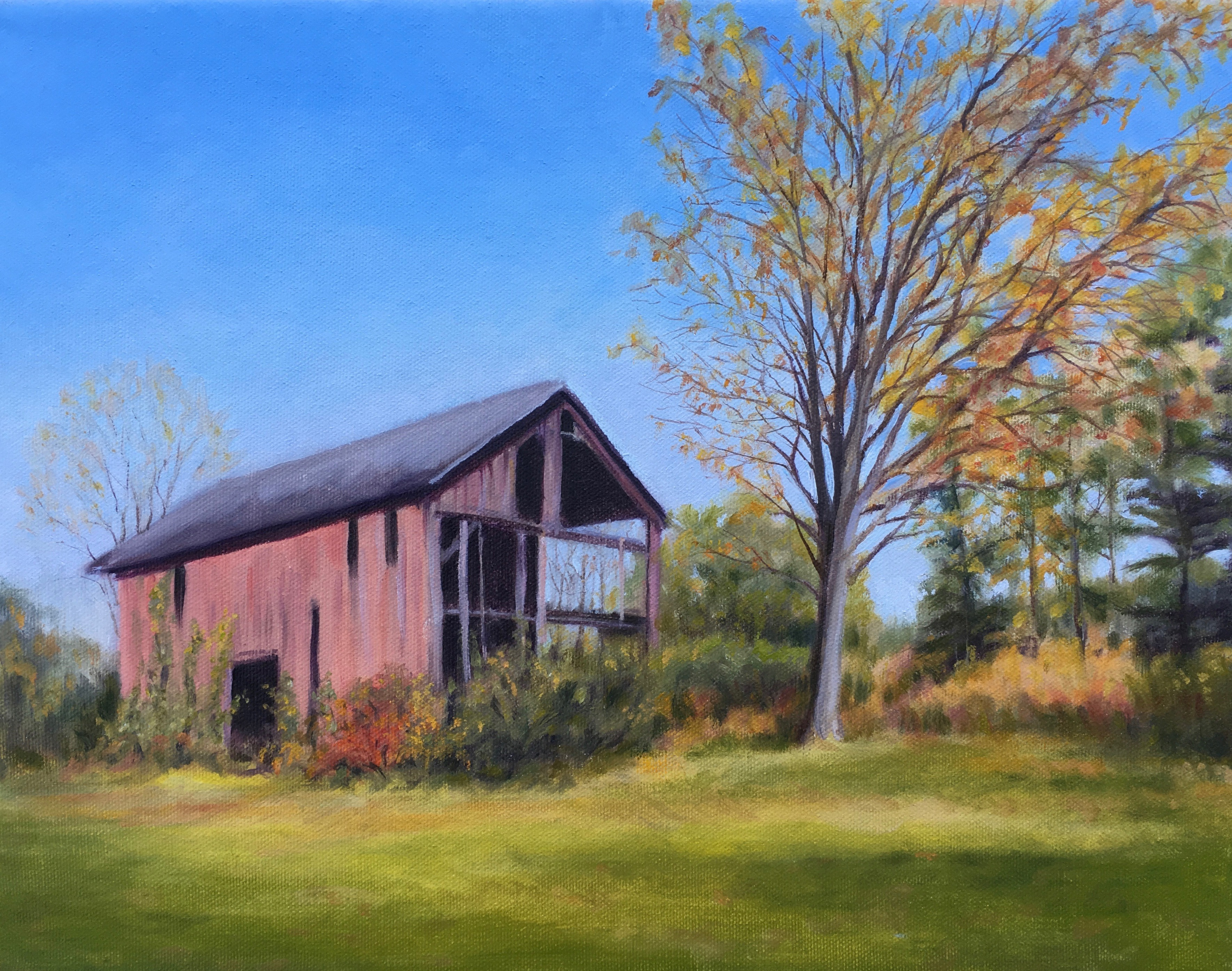 Old Red Barn - Pat Tanger